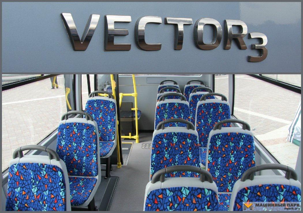 Младший Vector ПАЗа